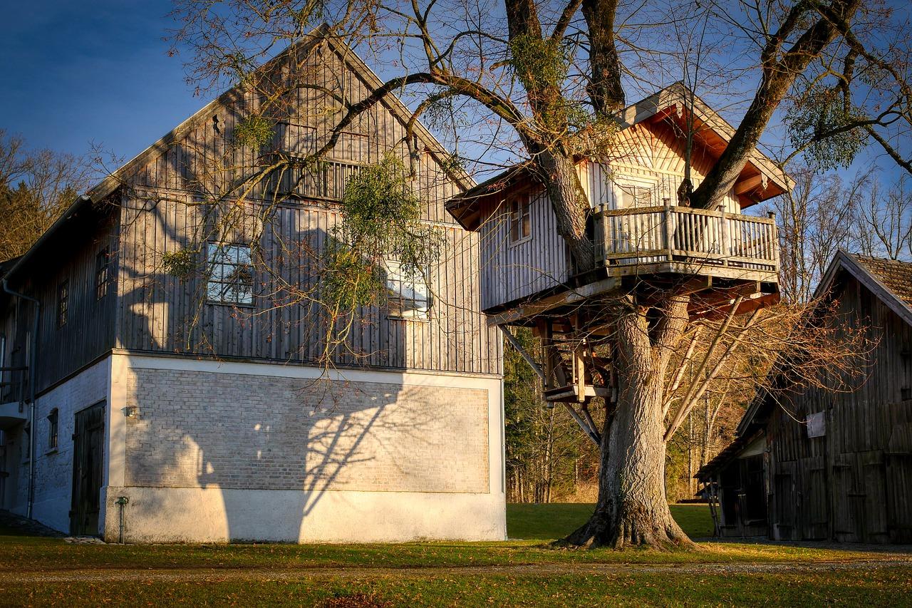 Ile kosztuje domek na drzewie i jak go zrobić?